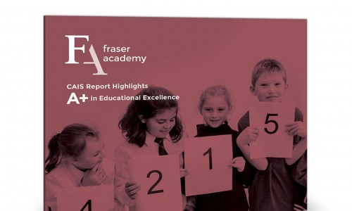 CAIS Accreditation Report Highlights